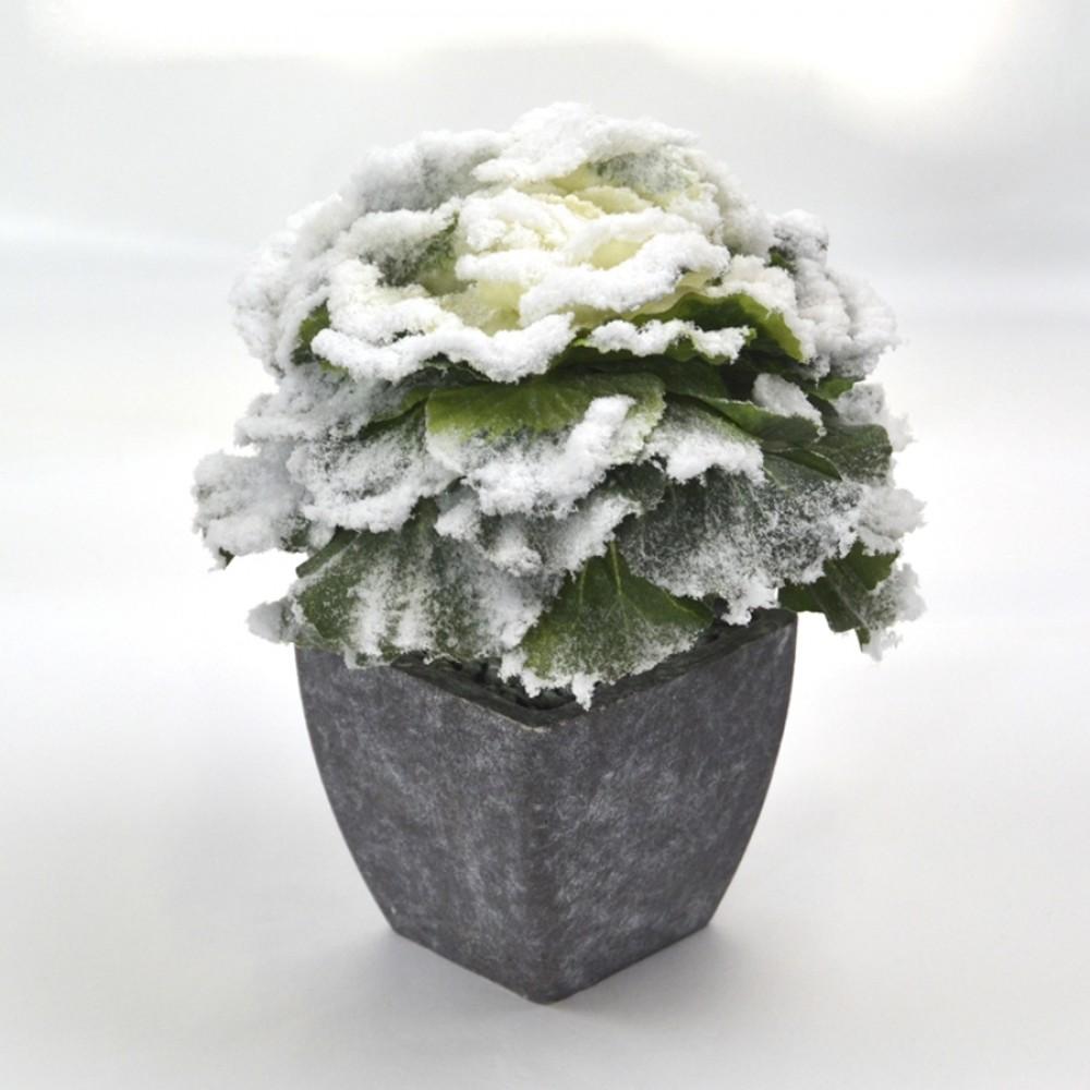 Pyntekål i skjuler, m/sne, 16 cm-31