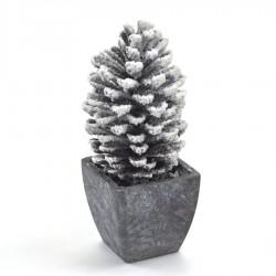 Kogle i skjuler, m/sne, 19 cm-20