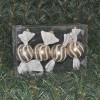 125cmrundtslikperlemorguldmedhvidtglitter4stkiboks-01