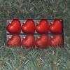 6cmhjerterrdperlemorogglitter8stkisortskemedklartlg-01